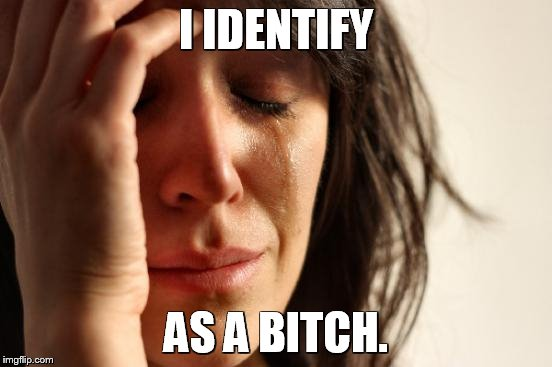 First World Problems Meme | I IDENTIFY AS A B**CH. | image tagged in memes,first world problems | made w/ Imgflip meme maker