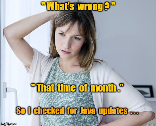 "Computer problem | "" What's  wrong ? "" So  I  checked  for  Java  updates  . . . "" That  time  of  month ."" 