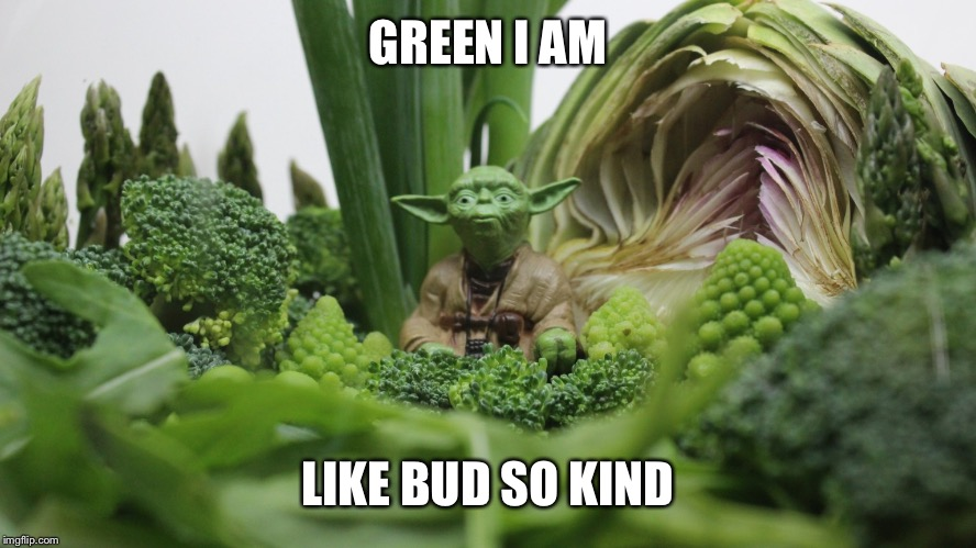 GREEN I AM LIKE BUD SO KIND | made w/ Imgflip meme maker