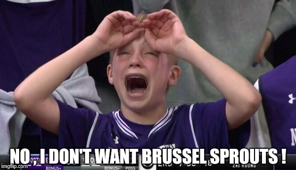 Northwestern no  | NO , I DON'T WANT BRUSSEL SPROUTS ! | image tagged in northwestern no | made w/ Imgflip meme maker