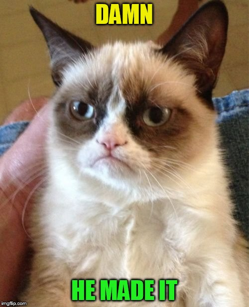 Grumpy Cat Meme | DAMN HE MADE IT | image tagged in memes,grumpy cat | made w/ Imgflip meme maker