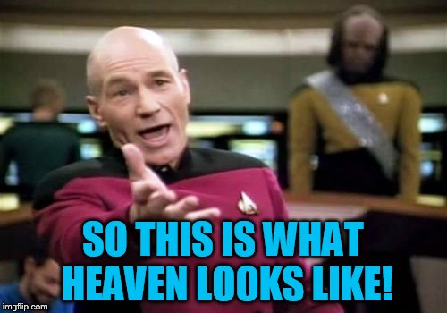 Picard Wtf Meme | SO THIS IS WHAT HEAVEN LOOKS LIKE! | image tagged in memes,picard wtf | made w/ Imgflip meme maker