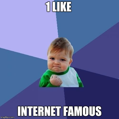 Success Kid Meme | 1 LIKE INTERNET FAMOUS | image tagged in memes,success kid | made w/ Imgflip meme maker