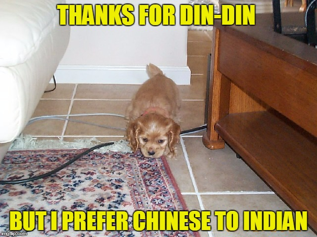 THANKS FOR DIN-DIN BUT I PREFER CHINESE TO INDIAN | made w/ Imgflip meme maker