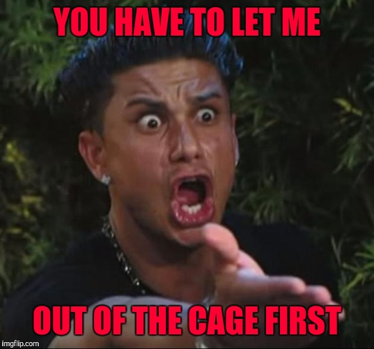 YOU HAVE TO LET ME OUT OF THE CAGE FIRST | made w/ Imgflip meme maker