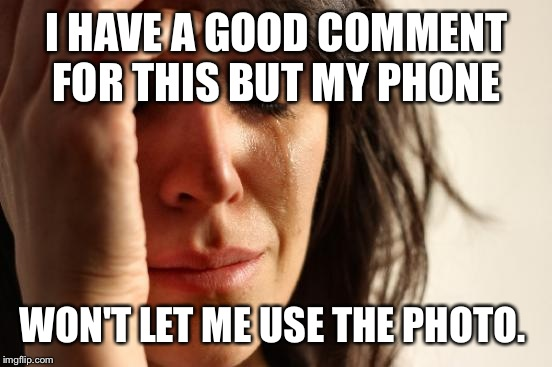 First World Problems Meme | I HAVE A GOOD COMMENT FOR THIS BUT MY PHONE WON'T LET ME USE THE PHOTO. | image tagged in memes,first world problems | made w/ Imgflip meme maker
