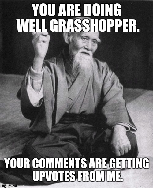 YOU ARE DOING WELL GRASSHOPPER. YOUR COMMENTS ARE GETTING UPVOTES FROM ME. | made w/ Imgflip meme maker