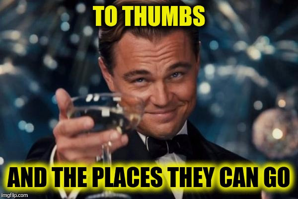 Leonardo Dicaprio Cheers Meme | TO THUMBS AND THE PLACES THEY CAN GO | image tagged in memes,leonardo dicaprio cheers | made w/ Imgflip meme maker
