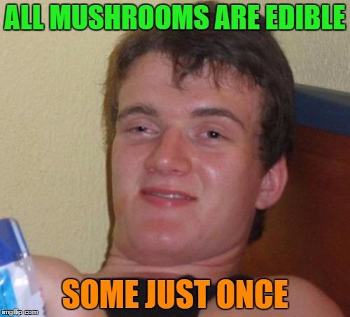 10 Guy Meme | ALL MUSHROOMS ARE EDIBLE SOME JUST ONCE | image tagged in memes,10 guy | made w/ Imgflip meme maker