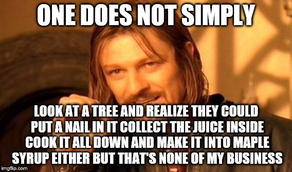 One Does Not Simply Meme | ONE DOES NOT SIMPLY LOOK AT A TREE AND REALIZE THEY COULD PUT A NAIL IN IT COLLECT THE JUICE INSIDE COOK IT ALL DOWN AND MAKE IT INTO MAPLE  | image tagged in memes,one does not simply | made w/ Imgflip meme maker