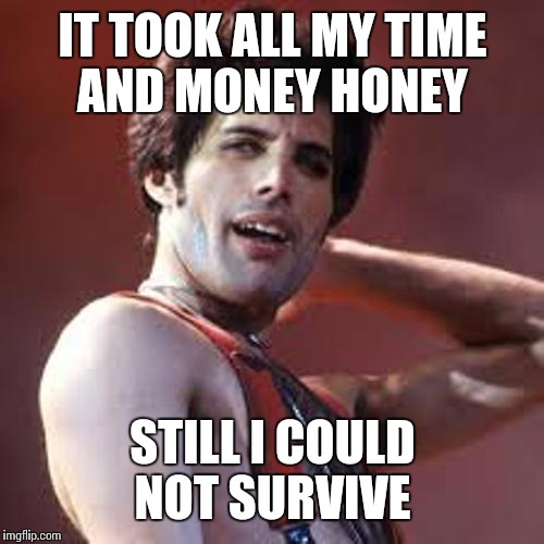 IT TOOK ALL MY TIME AND MONEY HONEY STILL I COULD NOT SURVIVE | made w/ Imgflip meme maker