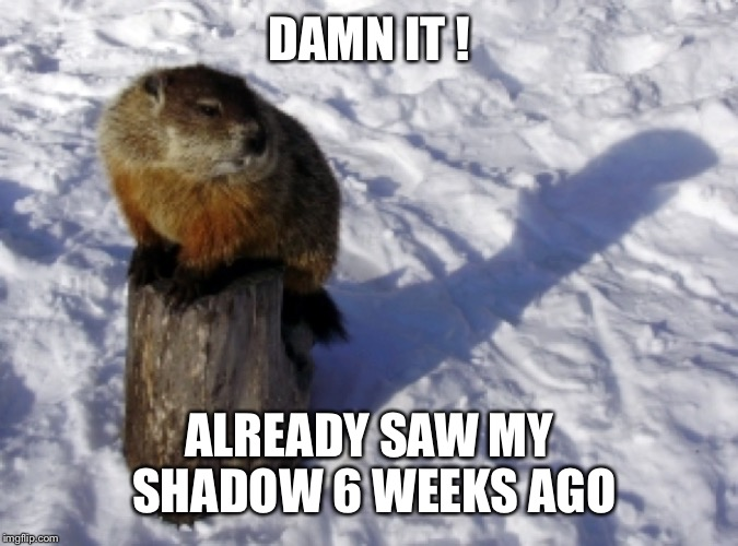 DAMN IT ! ALREADY SAW MY SHADOW 6 WEEKS AGO | made w/ Imgflip meme maker