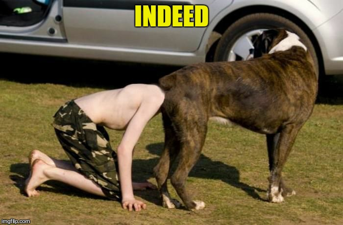 Boxer Butt | INDEED | image tagged in boxer butt | made w/ Imgflip meme maker