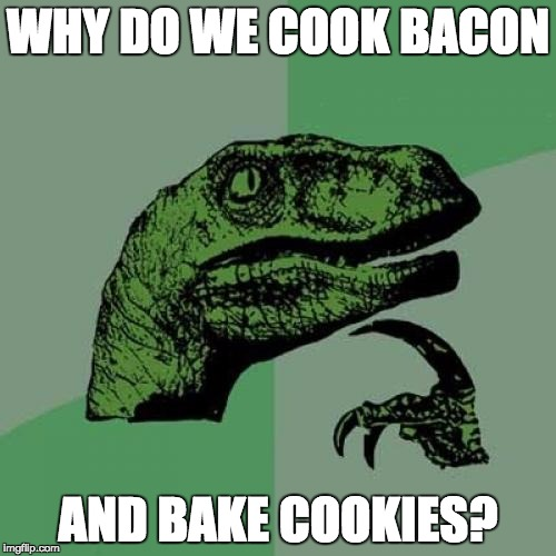 Philosoraptor | WHY DO WE COOK BACON AND BAKE COOKIES? | image tagged in memes,philosoraptor | made w/ Imgflip meme maker