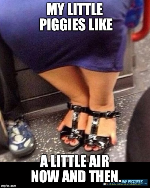 MY LITTLE PIGGIES LIKE A LITTLE AIR NOW AND THEN. | made w/ Imgflip meme maker