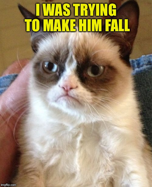 Grumpy Cat Meme | I WAS TRYING TO MAKE HIM FALL | image tagged in memes,grumpy cat | made w/ Imgflip meme maker