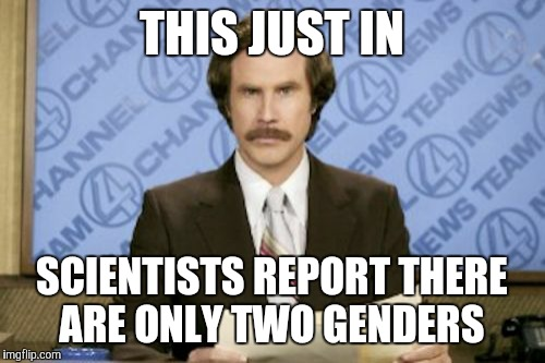 Ron Burgundy Meme | THIS JUST IN SCIENTISTS REPORT THERE ARE ONLY TWO GENDERS | image tagged in memes,ron burgundy | made w/ Imgflip meme maker