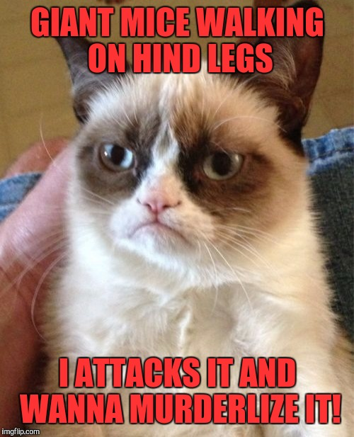 Grumpy Cat Meme | GIANT MICE WALKING ON HIND LEGS I ATTACKS IT AND WANNA MURDERLIZE IT! | image tagged in memes,grumpy cat | made w/ Imgflip meme maker