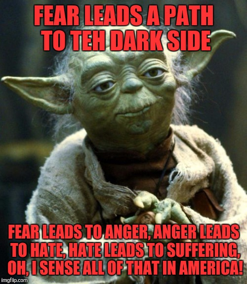 Star Wars Yoda Meme | FEAR LEADS A PATH TO TEH DARK SIDE FEAR LEADS TO ANGER, ANGER LEADS TO HATE, HATE LEADS TO SUFFERING, OH, I SENSE ALL OF THAT IN AMERICA! | image tagged in memes,star wars yoda | made w/ Imgflip meme maker