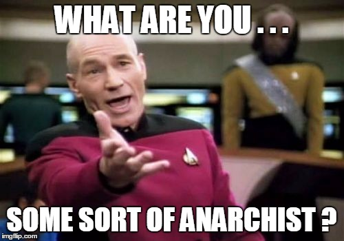 Picard Wtf Meme | WHAT ARE YOU . . . SOME SORT OF ANARCHIST ? | image tagged in memes,picard wtf | made w/ Imgflip meme maker