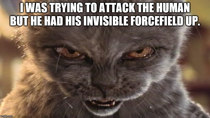 I WAS TRYING TO ATTACK THE HUMAN BUT HE HAD HIS INVISIBLE FORCEFIELD UP. | made w/ Imgflip meme maker