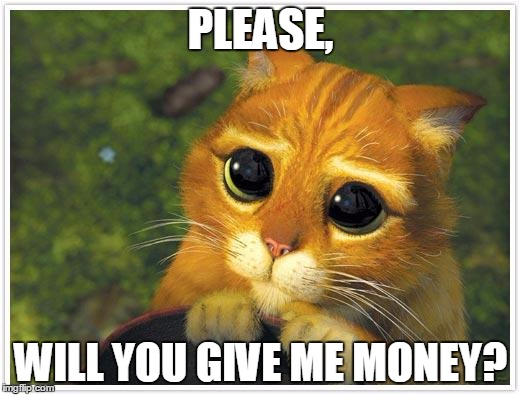 Shrek Cat | PLEASE, WILL YOU GIVE ME MONEY? | image tagged in memes,shrek cat | made w/ Imgflip meme maker
