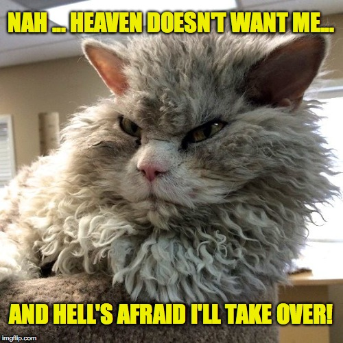 NAH ... HEAVEN DOESN'T WANT ME... AND HELL'S AFRAID I'LL TAKE OVER! | made w/ Imgflip meme maker