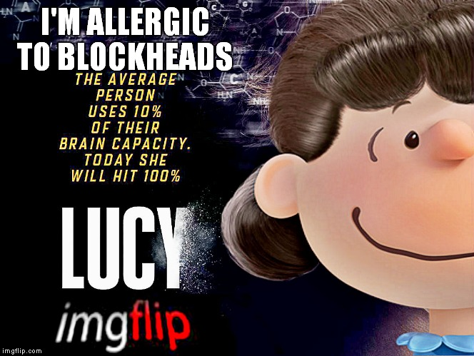 I'M ALLERGIC TO BLOCKHEADS | made w/ Imgflip meme maker