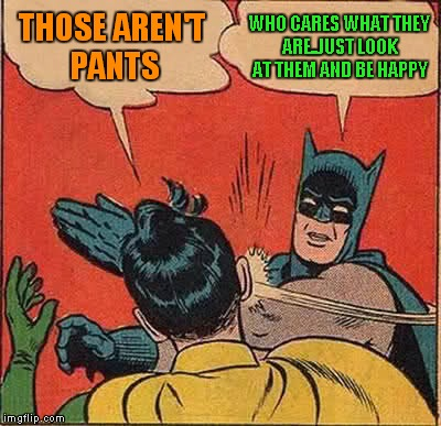 Batman Slapping Robin Meme | THOSE AREN'T PANTS WHO CARES WHAT THEY ARE..JUST LOOK AT THEM AND BE HAPPY | image tagged in memes,batman slapping robin | made w/ Imgflip meme maker