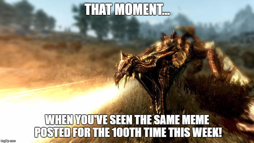 THAT MOMENT... WHEN YOU'VE SEEN THE SAME MEME POSTED FOR THE 100TH TIME THIS WEEK! | image tagged in skyrim | made w/ Imgflip meme maker