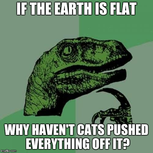 Philosoraptor | IF THE EARTH IS FLAT WHY HAVEN'T CATS PUSHED EVERYTHING OFF IT? | image tagged in memes,philosoraptor,cats | made w/ Imgflip meme maker