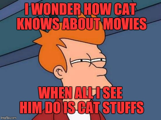 Futurama Fry Meme | I WONDER HOW CAT KNOWS ABOUT MOVIES WHEN ALL I SEE HIM DO IS CAT STUFFS | image tagged in memes,futurama fry | made w/ Imgflip meme maker