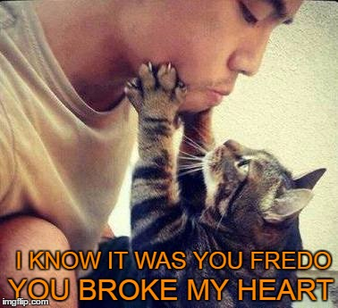 I KNOW IT WAS YOU FREDO YOU BROKE MY HEART | made w/ Imgflip meme maker