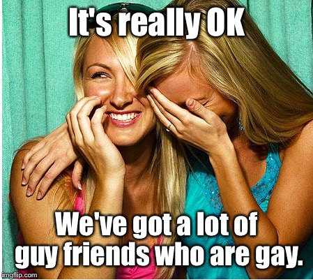 It's really OK We've got a lot of guy friends who are gay. | made w/ Imgflip meme maker