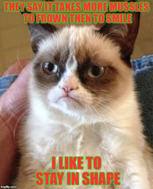 Grumpy Cat Meme | THEY SAY IT TAKES MORE MUSSLES TO FROWN THEN TO SMILE I LIKE TO STAY IN SHAPE | image tagged in memes,grumpy cat | made w/ Imgflip meme maker
