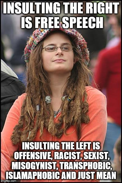 INSULTING THE RIGHT IS FREE SPEECH INSULTING THE LEFT IS OFFENSIVE, RACIST, SEXIST, MISOGYNIST, TRANSPHOBIC, ISLAMAPHOBIC AND JUST MEAN | made w/ Imgflip meme maker