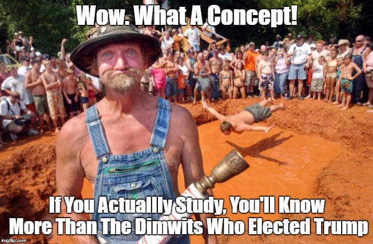 Wow. What A Concept! If You Actuallly Study, You'll Know More Than The Dimwits Who Elected Trump | made w/ Imgflip meme maker