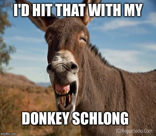 I'D HIT THAT WITH MY DONKEY SCHLONG | made w/ Imgflip meme maker