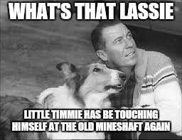 Got to hand it to him. .. | WHAT'S THAT LASSIE LITTLE TIMMIE HAS BE TOUCHING HIMSELF AT THE OLD MINESHAFT AGAIN | image tagged in memes,funny memes,lassie,first world problems | made w/ Imgflip meme maker