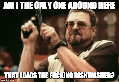 Am I The Only One Around Here Meme | AM I THE ONLY ONE AROUND HERE THAT LOADS THE F**KING DISHWASHER? | image tagged in memes,am i the only one around here,AdviceAnimals | made w/ Imgflip meme maker