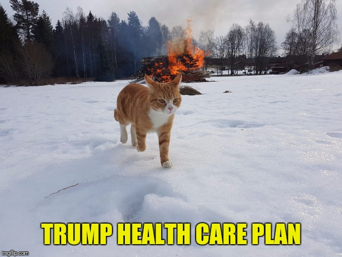 TRUMP HEALTH CARE PLAN | image tagged in trump,obamacare,aca | made w/ Imgflip meme maker