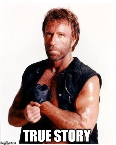 ARD Chuck Norris | TRUE STORY | image tagged in ard chuck norris | made w/ Imgflip meme maker