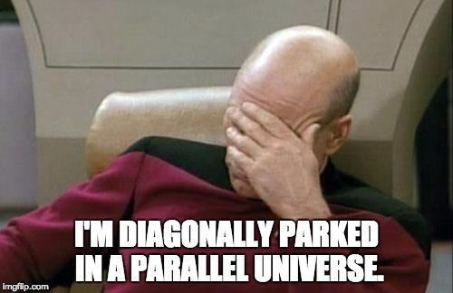 Captain Picard Facepalm Meme | I'M DIAGONALLY PARKED IN A PARALLEL UNIVERSE. | image tagged in memes,captain picard facepalm | made w/ Imgflip meme maker