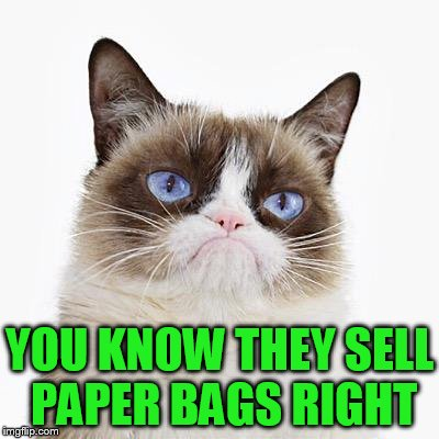 YOU KNOW THEY SELL PAPER BAGS RIGHT | made w/ Imgflip meme maker