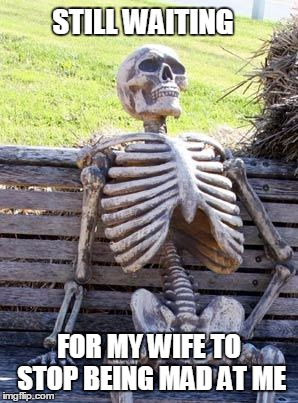 Waiting Skeleton Meme | STILL WAITING FOR MY WIFE TO STOP BEING MAD AT ME | image tagged in memes,waiting skeleton | made w/ Imgflip meme maker