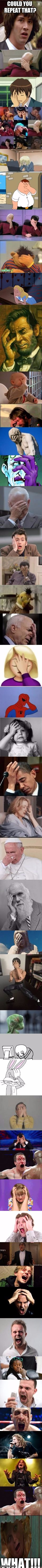facepalm | COULD YOU REPEAT THAT? WHAT!!! | image tagged in facepalm | made w/ Imgflip meme maker