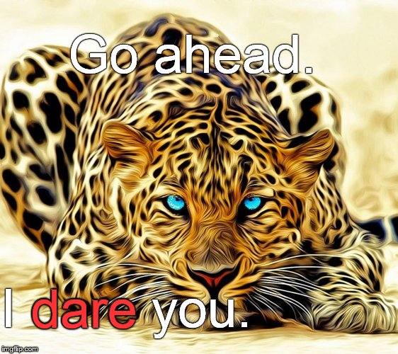 "Call me ""Grumpy"" one more time. See what happens.  Go on, just one more time. Please? 