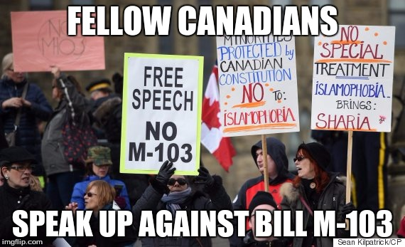 FELLOW CANADIANS SPEAK UP AGAINST BILL M-103 | image tagged in freedom | made w/ Imgflip meme maker
