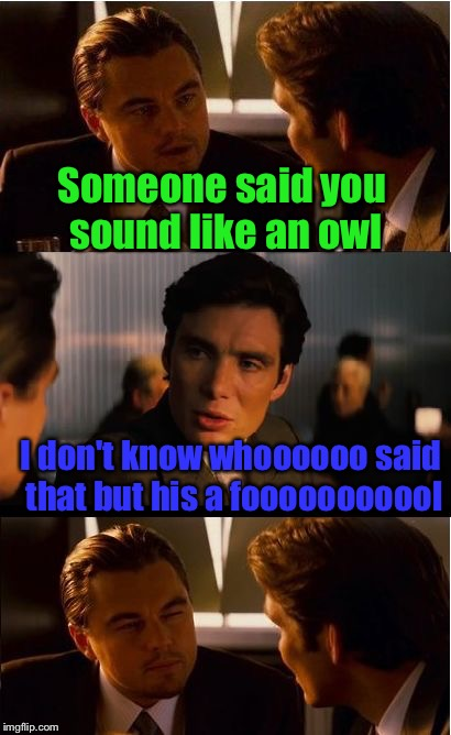 Well played ;-) | Someone said you sound like an owl I don't know whoooooo said that but his a fooooooooool | image tagged in memes,inception,owl,someone,sound | made w/ Imgflip meme maker