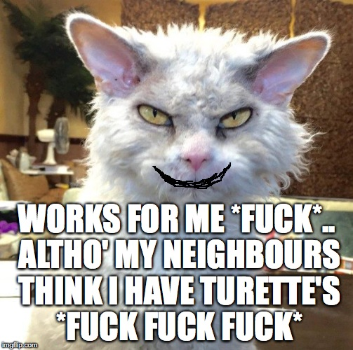 WORKS FOR ME *F**K*.. ALTHO' MY NEIGHBOURS THINK I HAVE TURETTE'S *F**K F**K F**K* | made w/ Imgflip meme maker